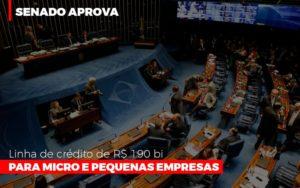 Senado Aprova Linha De Crédito De R$190 Bi Para Micro E Pequenas Empresas - O Contador Online