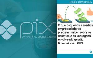 O Que Pequenos E Medios Empreendedores Precisam Saber Sobre Os Desafios E As Vantagens Envolvendo Gestao Financeira E O Pix  - O Contador Online