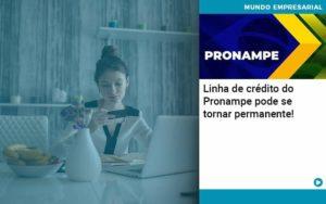 Linha De Credito Do Pronampe Pode Se Tornar Permanente - O Contador Online