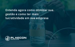 08 Plaecon Contabilidade - O Contador Online