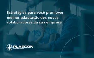 Conheça As Estratégias Para Você Promover Melhor Adaptação Dos Novos Colaboradores Da Sua Empresa Plaecon Contabilidade (1) - O Contador Online