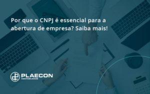Por Que O Cnpj é Essencial Para A Abertura De Empresa Plaecon Contabilidade - O Contador Online