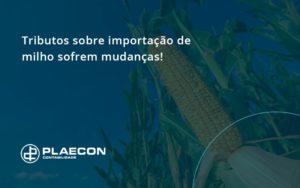 Tributos Sobre Importação De Milho Sofrem Mudanças! Plaecon Contabilidade - O Contador Online